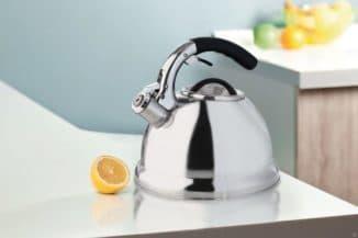 чайник со свистком для газовой плиты отзывы