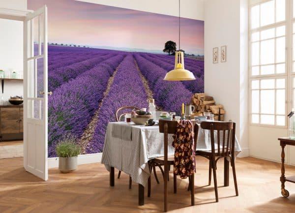 фотообои на стену на кухню в стиле прованс